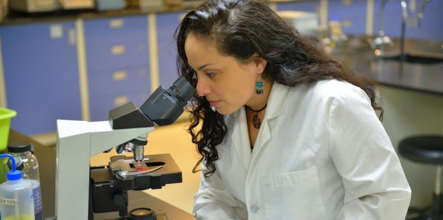 La microbióloga ambiental Elizabeth Padilla Crespo labora como profesora en la Universidad Interamericana, recinto de San Germán, donde también es mentora del programa subgraduado de investigación McNair (horizontal-x3)