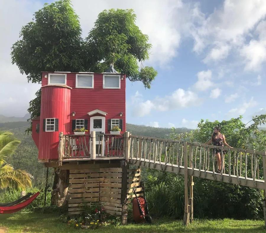 El Yunque View Treehouse en Río Grande se encuentra en medio de la selva tropical, envolviendo a sus huéspedes en la flora y fauna nativa. (semisquare-x3)