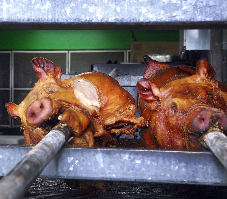 La industria local de la porcicultura logró producir en un momento el 30% de la carne de cerdo que se consumía (semisquare-x3)