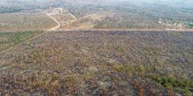 El Amazonas, la riqueza ecológica del mundo que desaparece por el fuego