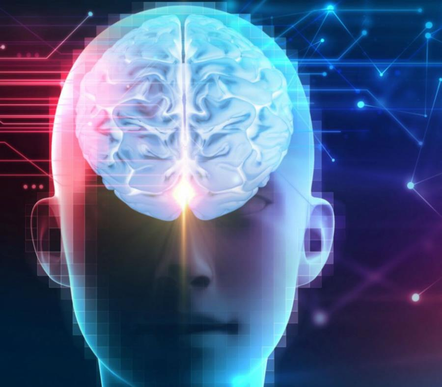 El objetivo de este experimento es crear una red social de cerebros. (semisquare-x3)