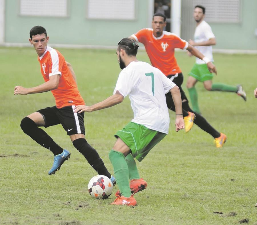 La acción deportiva interuniversitaria comienza hoy con el partido entre los Taínos de la Universidad del Turabo y los Lobos del recinto de Arecibo de la UPR. (Suministrada / Luis F. Minguela) (semisquare-x3)