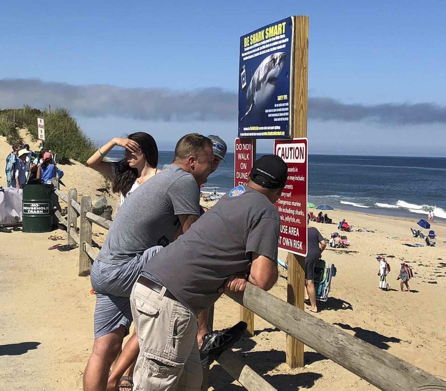 Un grupo de personas conversan enfrente de la playa de de Newcomb Hollow, en Wellfleet, Massachusetts, después de que se se reportó un ataque de tiburón en esta playa el sábado 15 de septiembre del 2018 (semisquare-x3)