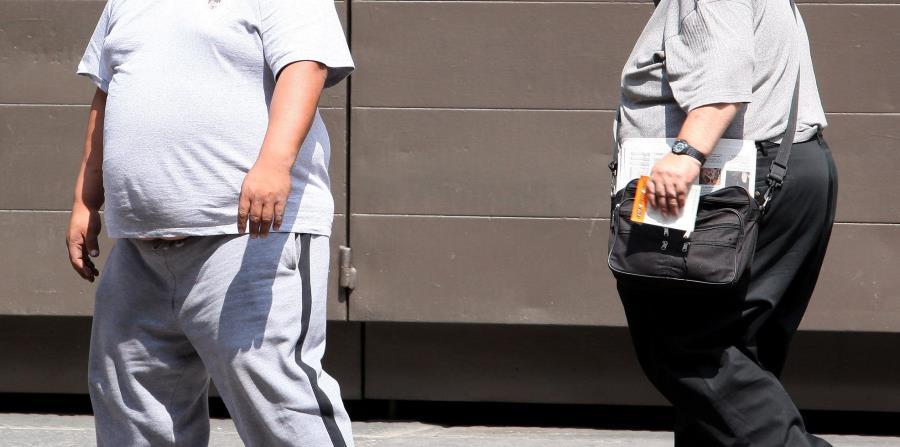 Estados Unidos fue, con casi el 13% de sus habitantes, el país con el mayor nivel de obesidad de entre los 20 más poblados. (horizontal-x3)