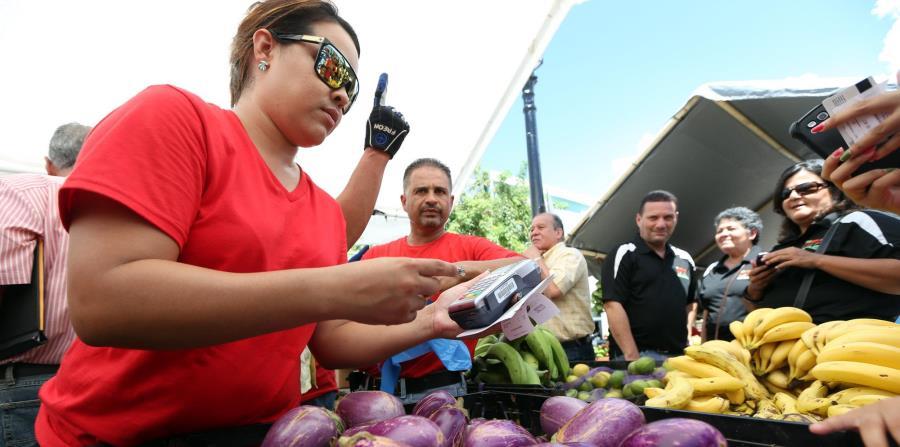 Actualmente, solo el programa de comedores escolares del Departamento de Educación y el Mercado Familiar del Departamento de la Familia gestionan compras significativas al agro local a través de ADEA. (horizontal-x3)