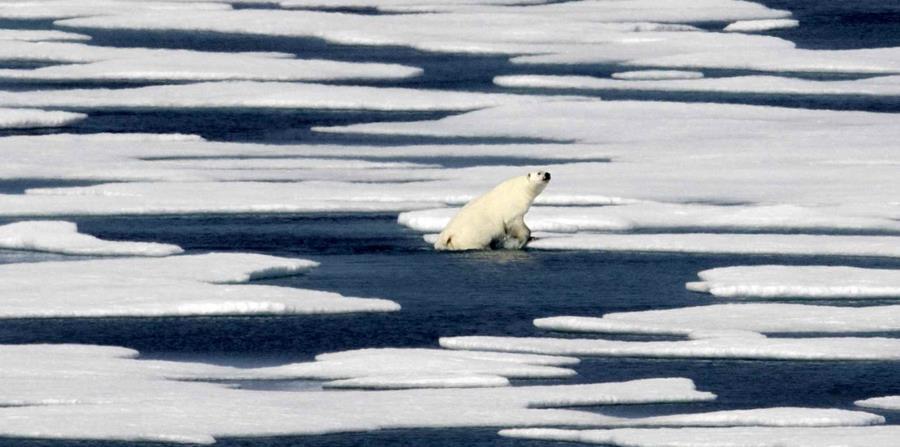 Entre 1992 y 2011, la Antártida perdió casi 84,000 millones de toneladas (76,000 millones de toneladas métricas) de hielo por año. (AP) (horizontal-x3)
