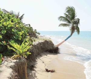 La erosión costera, un asunto apremiante para Puerto Rico