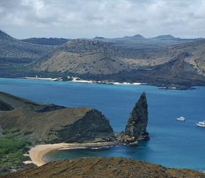 Identifican más de 1,500 especies extrañas en Galápagos