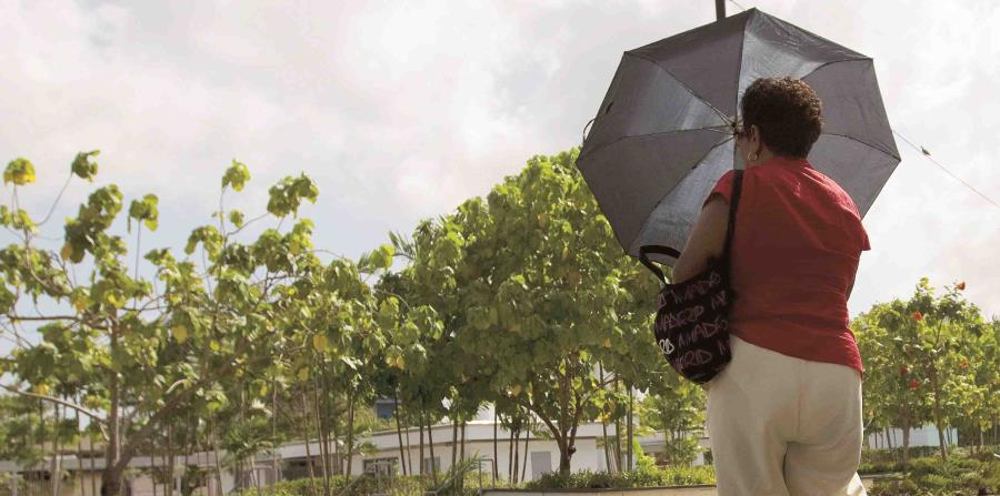 Una mujer se protege con una sombrilla del sol. (Archivo / GFR Media) (horizontal-x3)