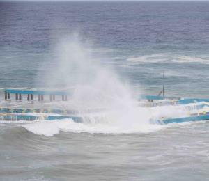 Vanguardistas al rescate del océano