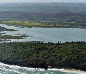 Invasores ecológicos en la isla