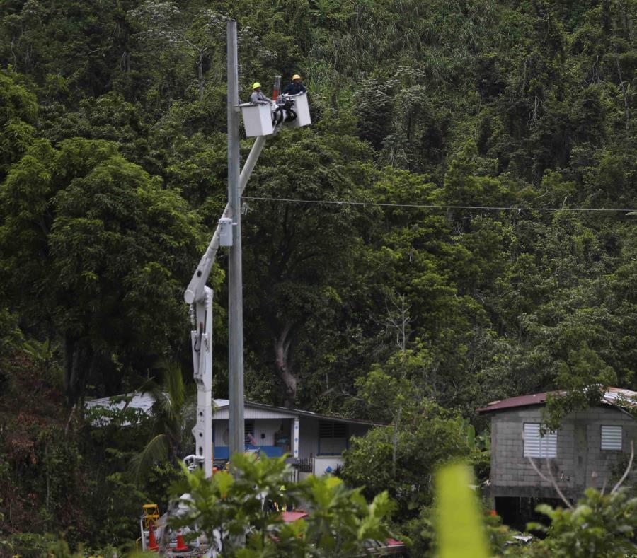 Unos empleados de la Autoridad de Energía Eléctrica colocan cables en un poste. (GFR Media) (semisquare-x3)