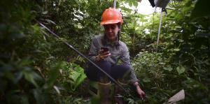 Investigan el cambio climático en El Yunque