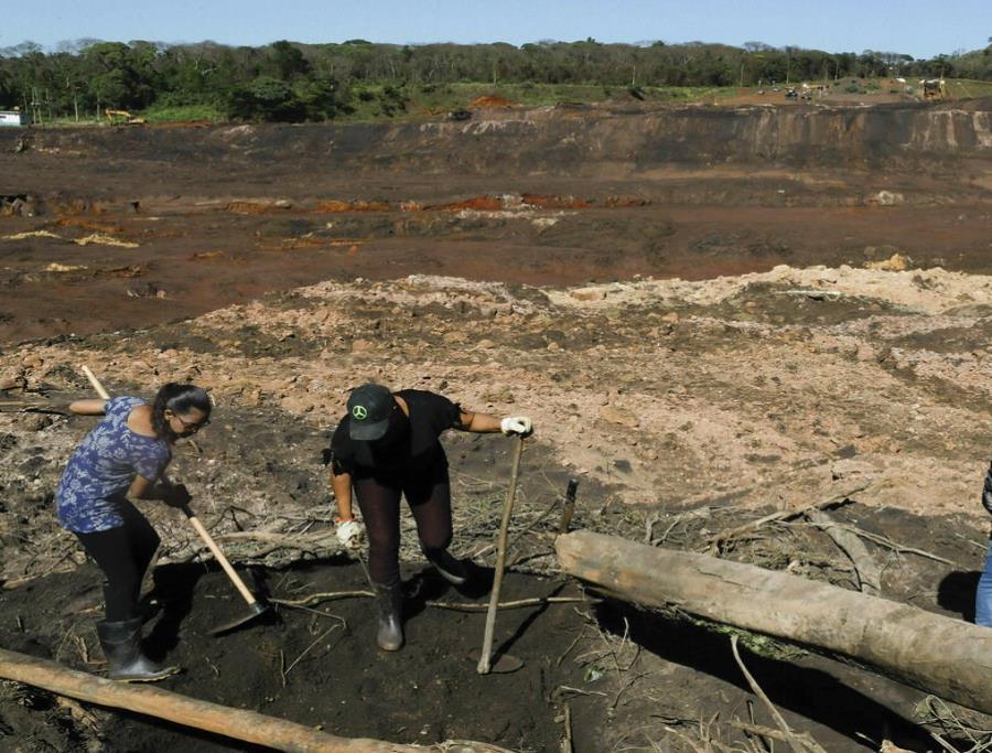 Se eleva a 99 la cantidad de muertos por el colapso de la represa en Brasil (semisquare-x3)
