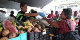 Agricultores urgen a reactivar los Mercados Familiares