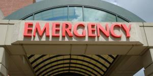 Una palma mata a una mujer mientras se mecía en una hamaca en Florida
