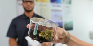 En jaque la industria del cannabis medicinal