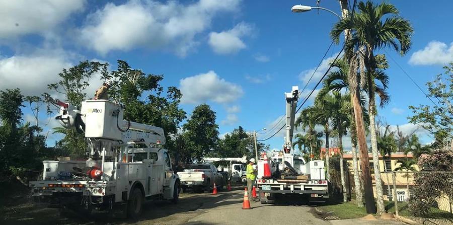 Brigadas de la compañía B&B llegaron a la comunidad rural El Progreso en Coamo. (horizontal-x3)