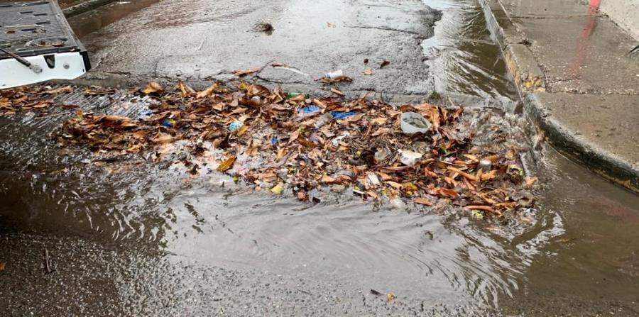 Una gran cantidad de material vegetativo y de basura obstruye el flujo del agua. (Sandra Torres)