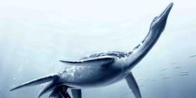 Científicos hallan por primera vez un plesiosaurio en Perú