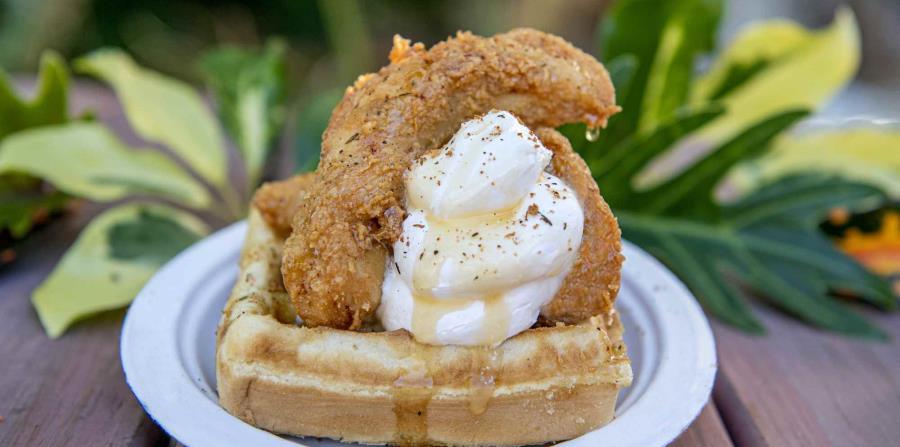 Plato de pollo y  waffle. (Suministrada)