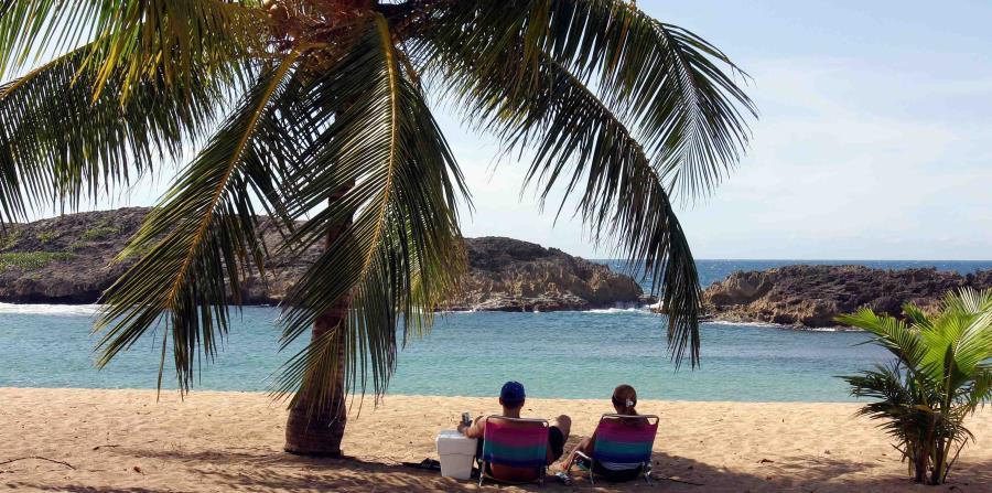 palmeras playas tiempo soleado (horizontal-x3)