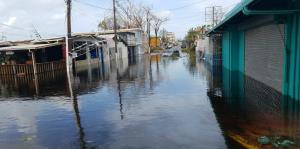 Las inundaciones sumergen a Ocean Park