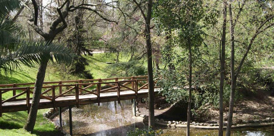 Además de ser uno de los pulmones principales de la ciudad, el Parque del Retiro hace las veces de centro cultural y de ocio al aire libre. (Suministrada)