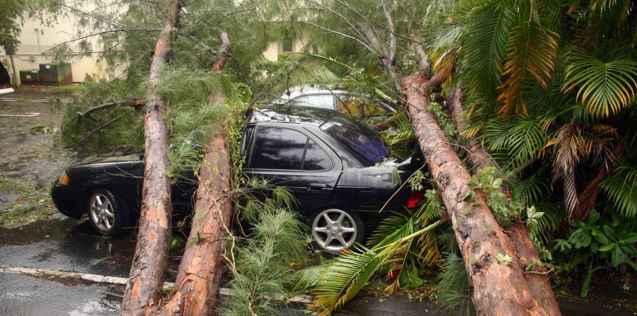 Es importante que te comuniques con tu agente de seguros para que te aclare cuál es el seguro que tiene tu auto y qué cubierta tiene. (horizontal-x3)
