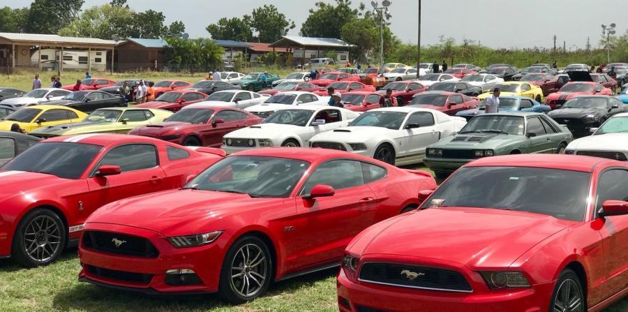 Dueños de Mustang de todo Puerto Rico, incluyendo integrantes de los más de 20 clubes Mustang que hay alrededor de la isla, formaron parte de la actividad.