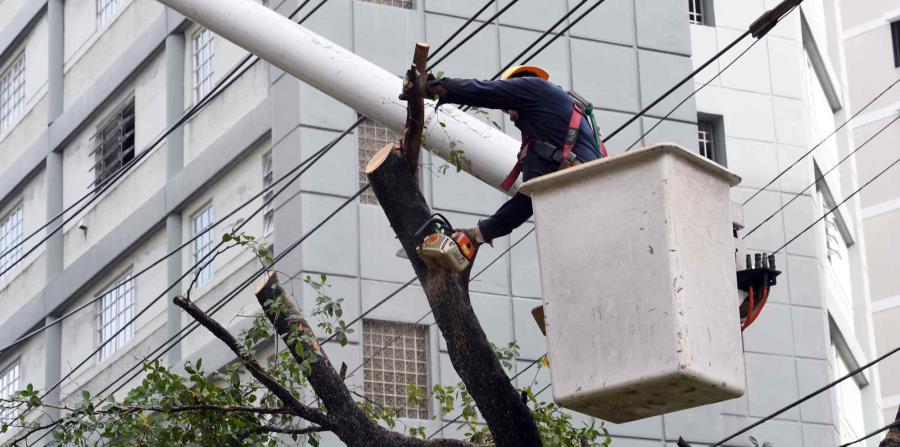 Un trabajador de la AEE cortando un árbol en la calle Magdalena, en Condado. (horizontal-x3)