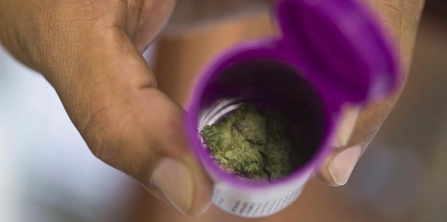 Salud anuncia un alza en emisión de tarjetas para pacientes de cannabis (horizontal-x3)