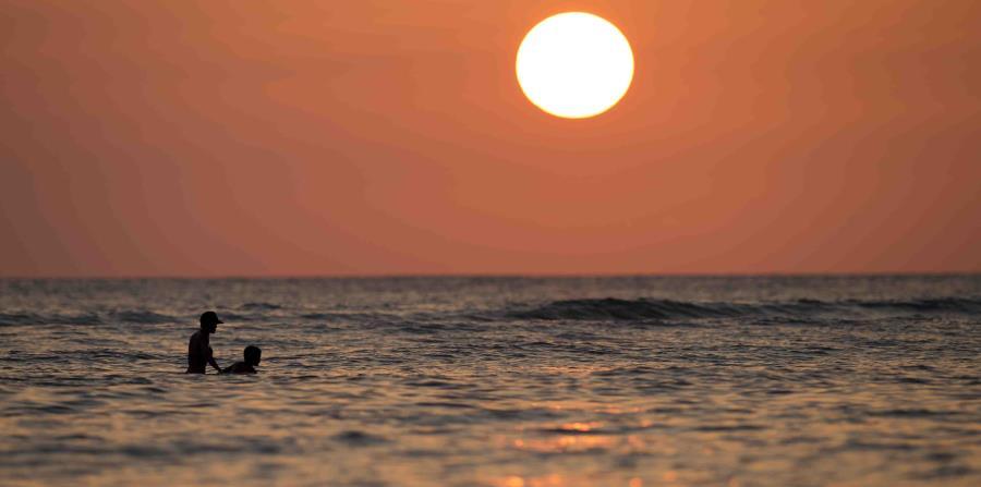 Aunque el aumento de la temperatura del mar es el elemento de incidencia más importante, el cambio climático provoca que los océanos sean más ácidos y tengan menos oxígeno. (AP / Carolyn Kaster) (horizontal-x3)