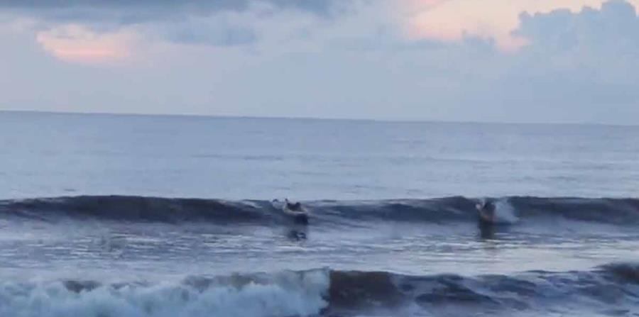 Vista de una de las playas de este de Florida. (Imagen tomada de YouTube) (horizontal-x3)