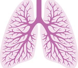 Conoce sobre la infección en el parenquima pulmonar