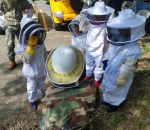 Desarrollan nueva cepa de apicultores jóvenes