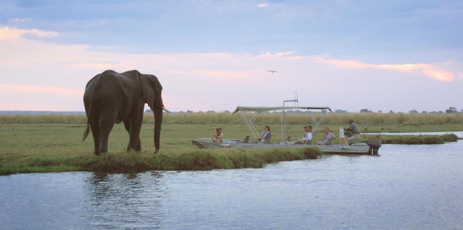 Safari en 4x4 el Parque Nacional de Chobe. (EFE/Foto cedida por Raptanat)