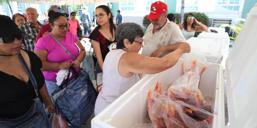 A las 10:00 a.m. el Mercado Agrícola se había quedado sin pescado fresco, y los pescadores de Cataño acudieron con neveras llenas para la venta (horizontal-x3)