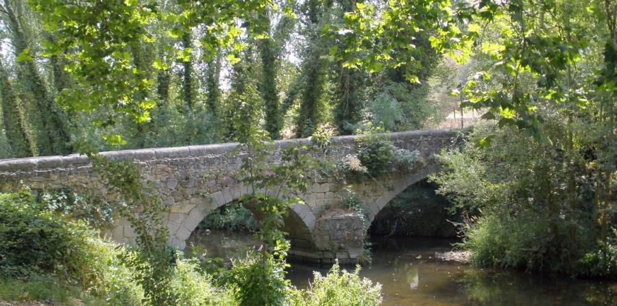 Este hermoso y poco conocido parque es una de las joyas del cinturón verde de Segovia. (Suministrada)