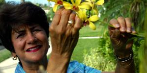 Fallece la excontralora Ileana Colón Carlo