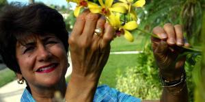 Fallece la excontralora Ileana Colón ...