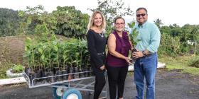 Vivero de café en Caguas busca fortalecer el segmento
