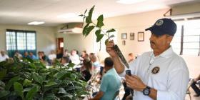 Agricultura promueve nueva técnica de siembra de café