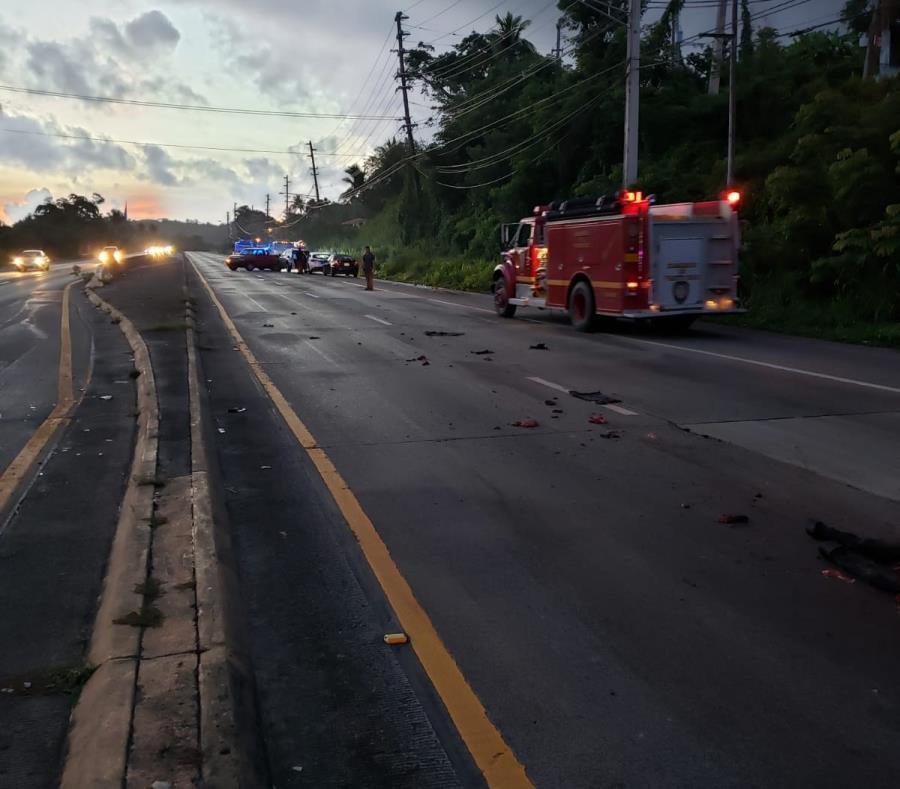 Imagen de la escena en la que una yegua murió atropellada en la carretera PR-3 en Luquillo. (Suministrada) (semisquare-x3)