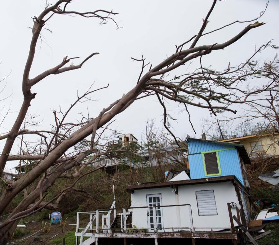 The Board certified a plan that contemplated insurers paying their clients in Puerto Rico almost $ 22 billion in claims. (semisquare-x3)
