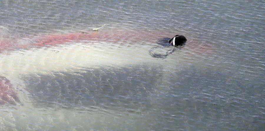 Avioneta cae en San Juan (horizontal-x3)