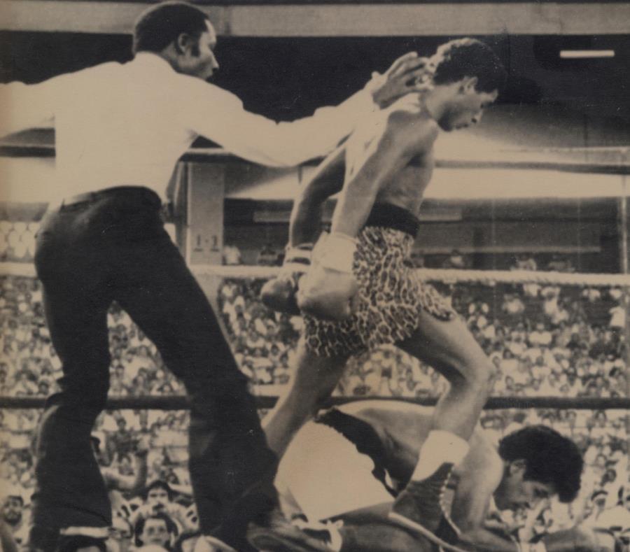 """Héctor """"Macho"""" Camacho manda a la lona al mexicano Rafael Limón durante el combate efectuado entre ambos en el estadio Hiram Bithorn. (GFR Media) (semisquare-x3)"""