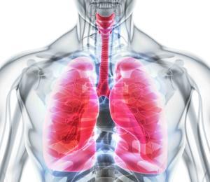 El estrés, las enfermedades respiratorias y el COVID-19