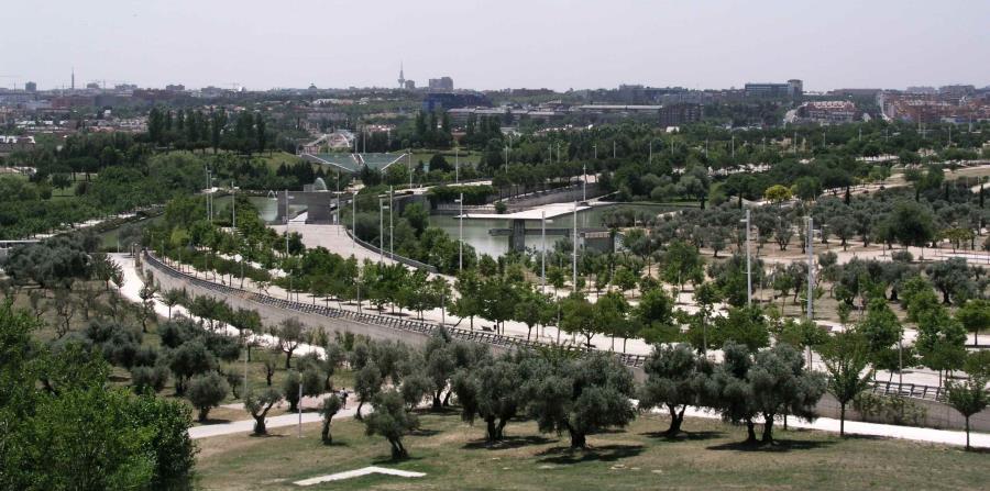 El Parque Juan Carlos I es un entorno relajante que también se presta a la realización de actividades deportivas. (Suministrada)
