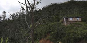 Vecinos de Jayuya y Adjuntas siguen sin electricidad ni agua